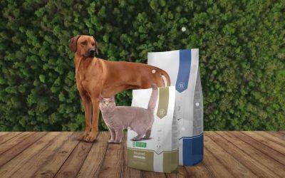 Nature's Protection: de beste voeding voor jouw kat